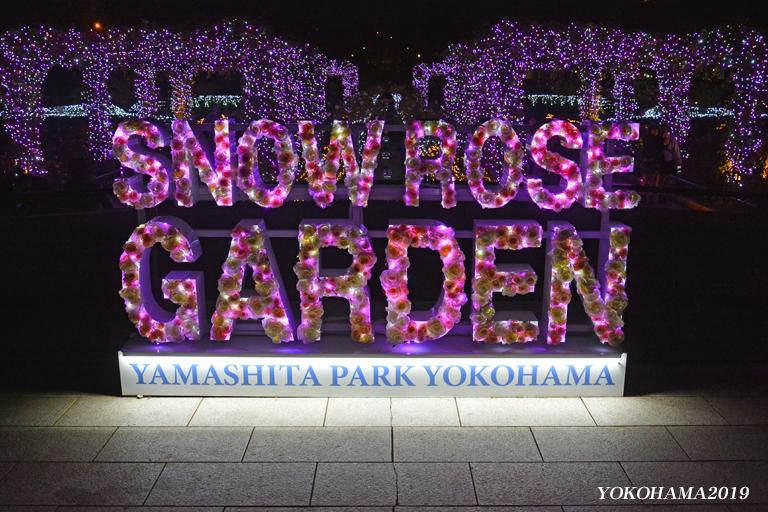 豪華客船お見送りし‥『そうだ 横浜、行こう』④_d0251161_11093285.jpg