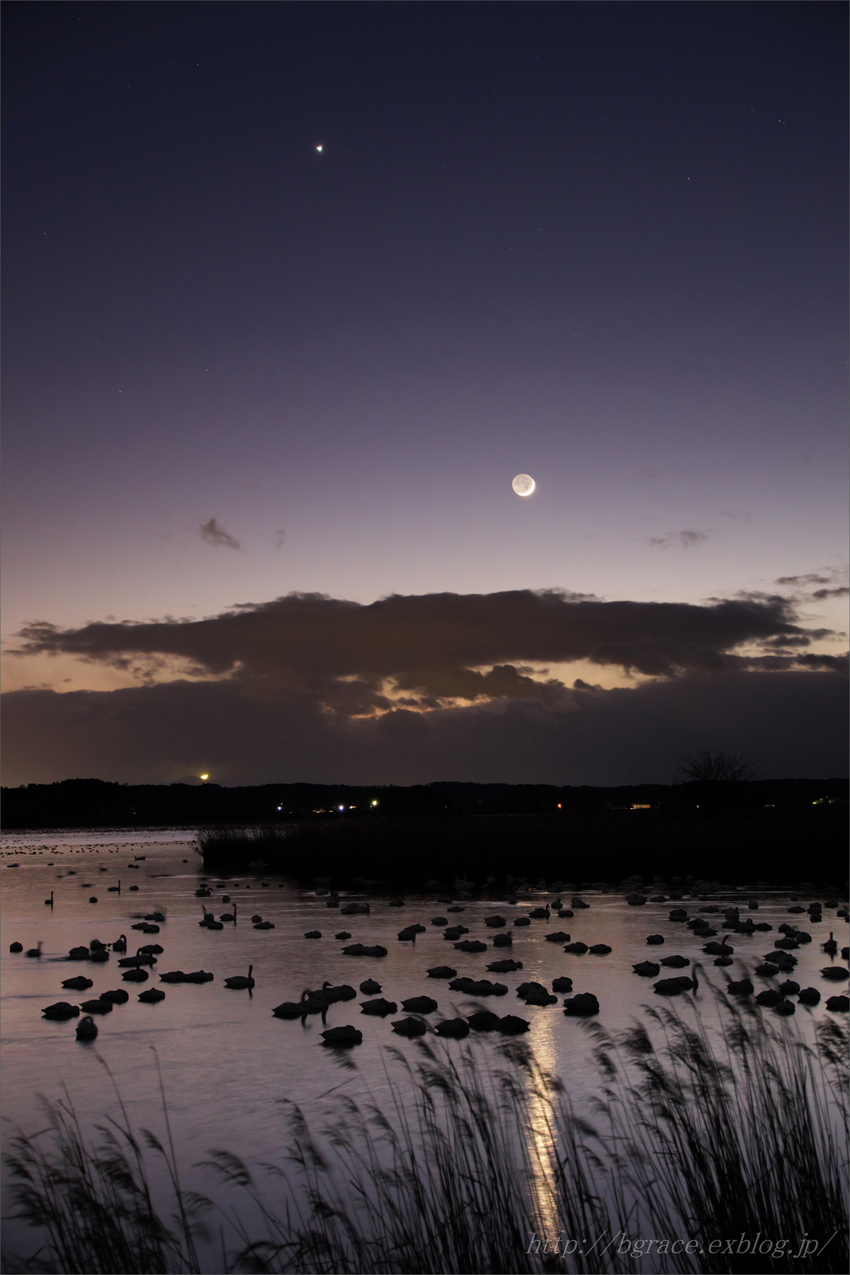 宵の明星 と 細い月 伊豆沼_b0191074_20155865.jpg