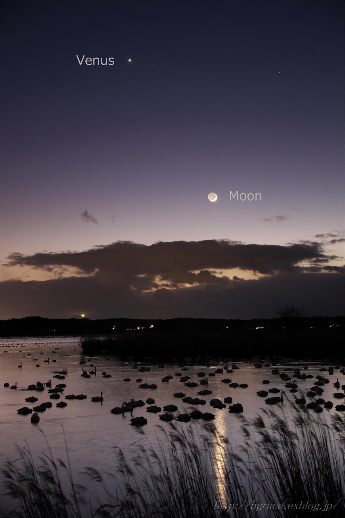 宵の明星 と 細い月 伊豆沼_b0191074_20160518.jpg