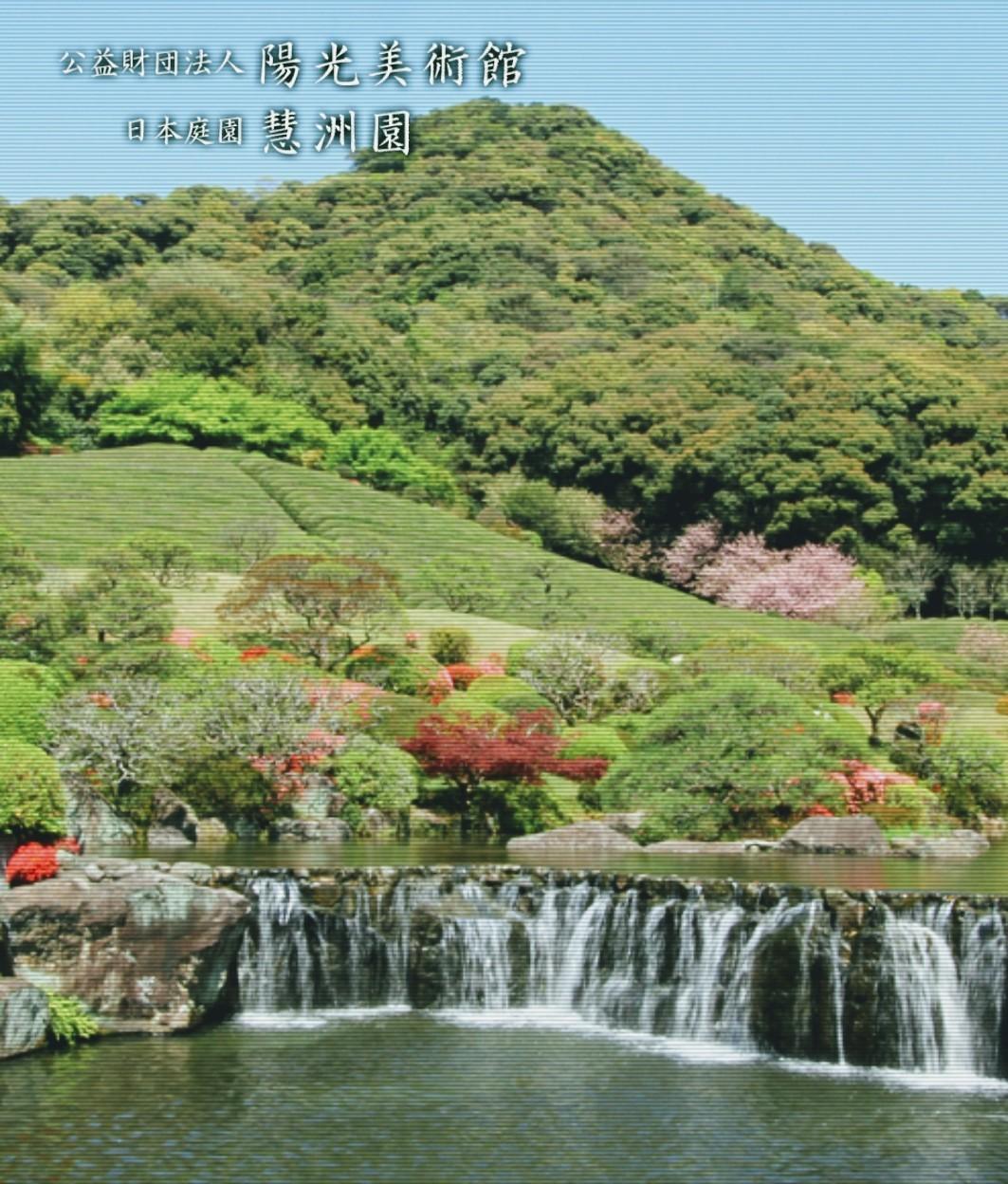 唯一売らない花器が武雄市陽光美術館へ_d0195183_04572213.jpg