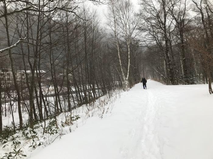 雪の上高地_f0232994_15244126.jpg