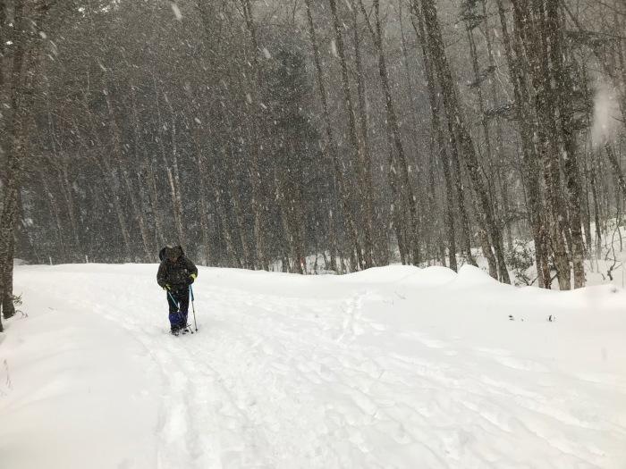 雪の上高地_f0232994_15251395.jpg