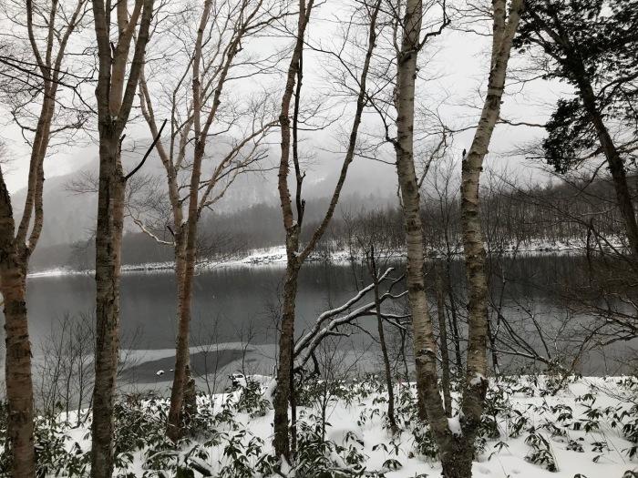 雪の上高地_f0232994_15252034.jpg