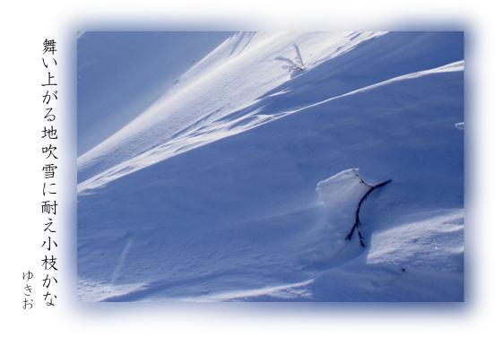 雪景色 その⑦_b0392813_22155990.jpg
