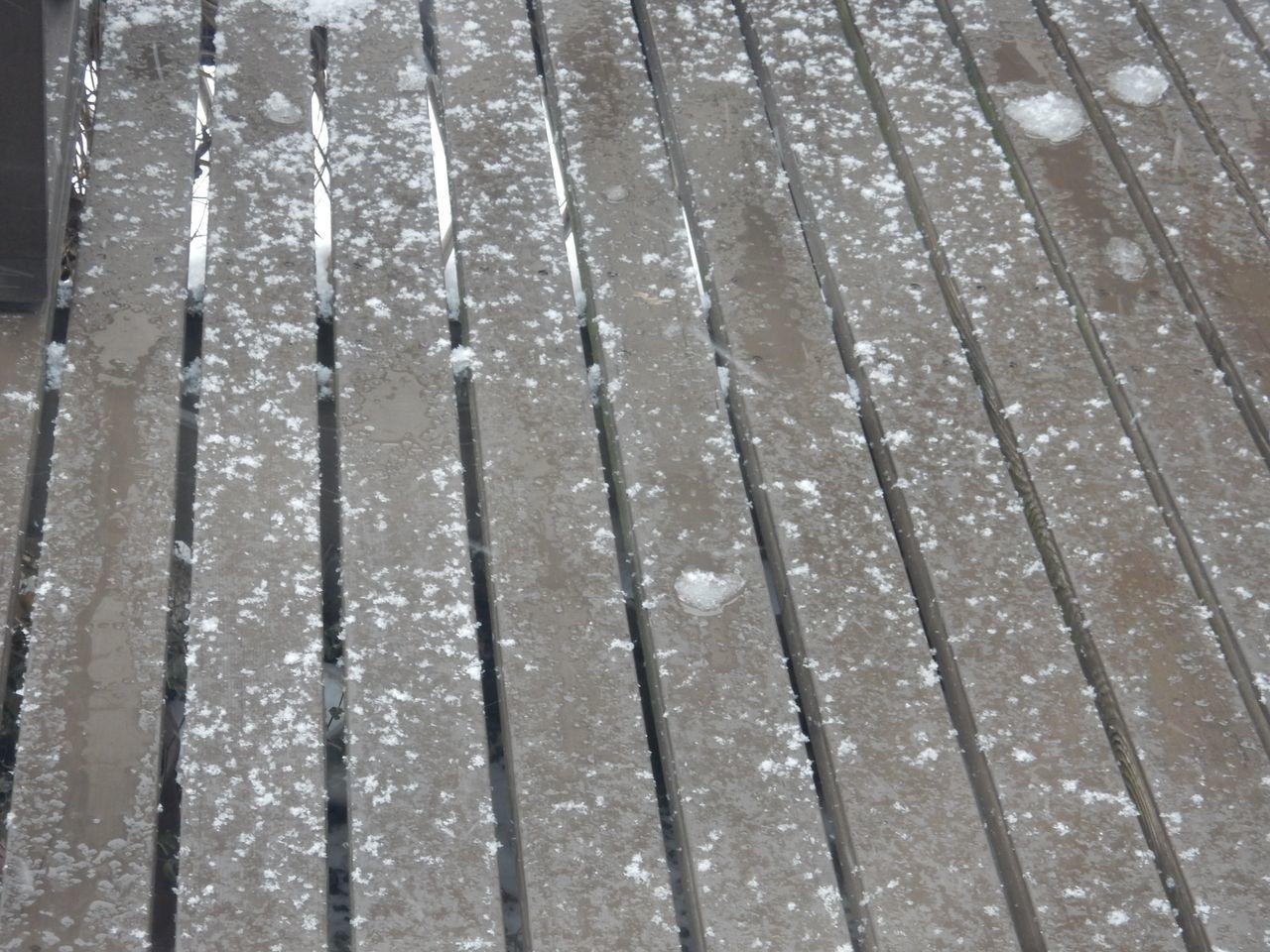寒さも雪もゆるい小寒_c0025115_21400932.jpg