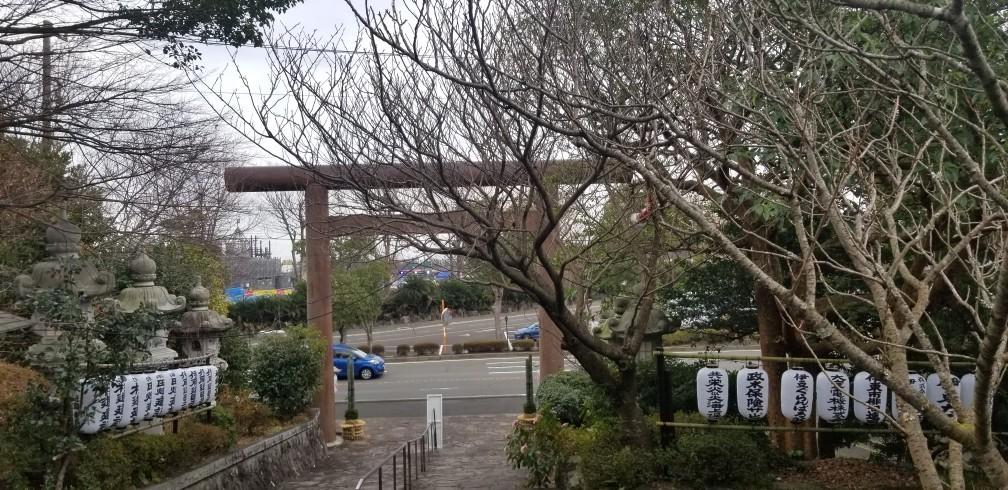 ♪2020年★初ドライブは「シャボテン動物公園」へ_d0162225_23082441.jpg