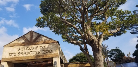 ♪2020年★初ドライブは「シャボテン動物公園」へ_d0162225_23095778.jpg