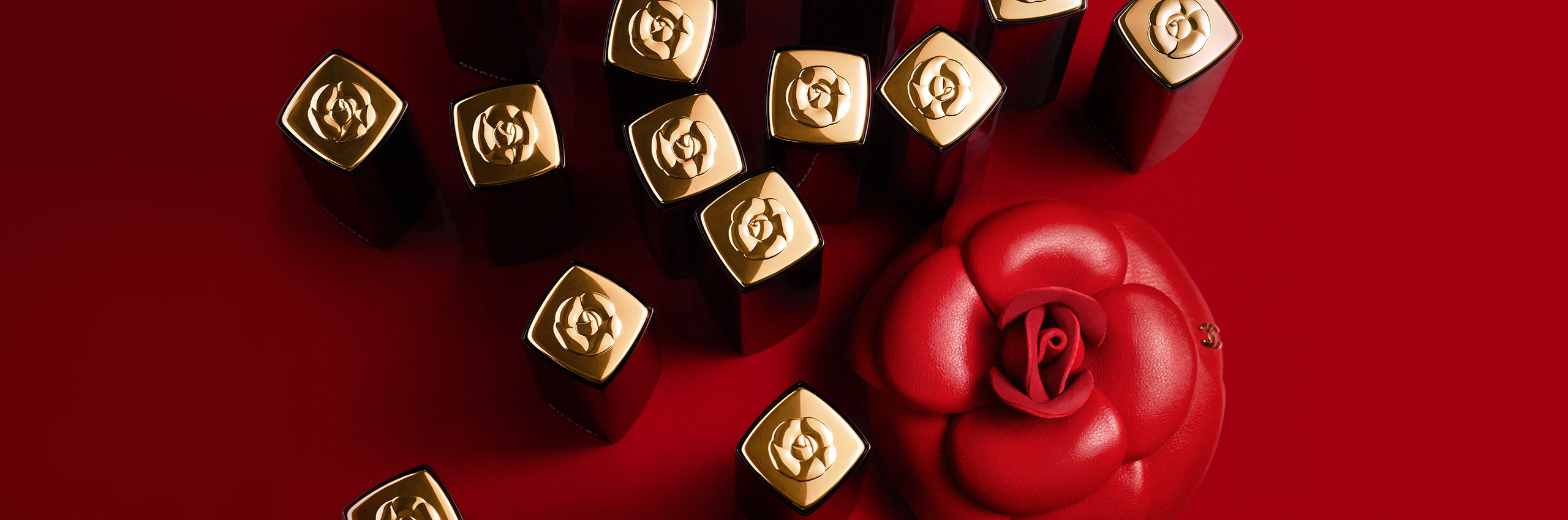 CHANEL ROUGE ALLURE CAME\'LIA ☆ Limited Edition_e0303431_16504031.jpg