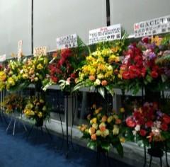 GACKT大阪ライブ行ってきました!_c0036138_01195619.jpg