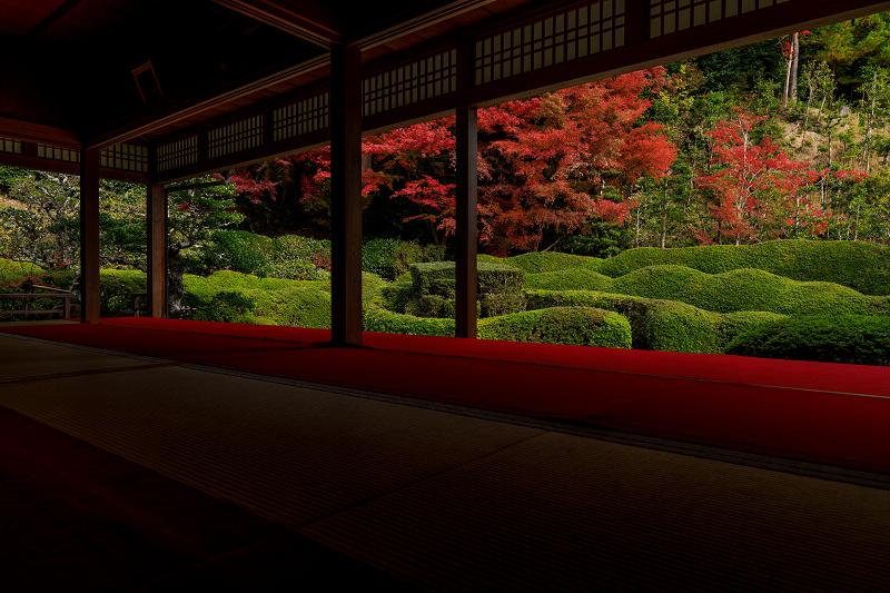 紅葉が彩る滋賀2019 大池寺の秋_f0155048_2345555.jpg