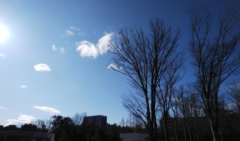 青い日_e0002850_09243022.jpg