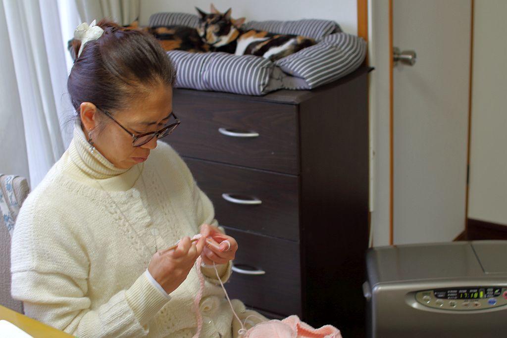 編み物と猫とファンヒーター_e0220163_15585044.jpg