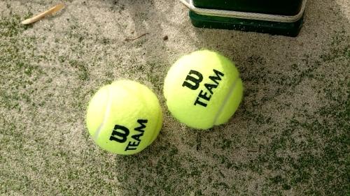 「モンマステニス」_a0075684_09490401.jpg