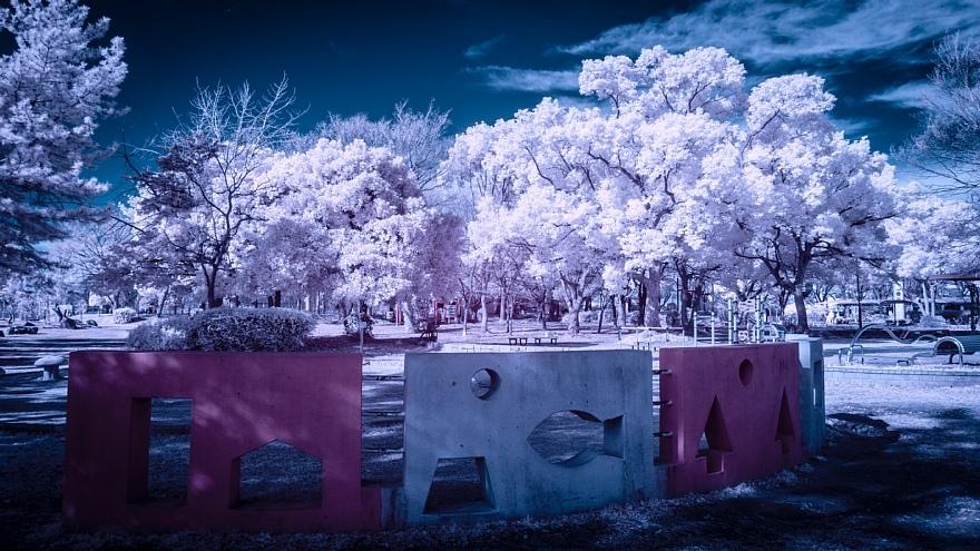 偽総天然色に彩られた公園_d0353489_19270555.jpg