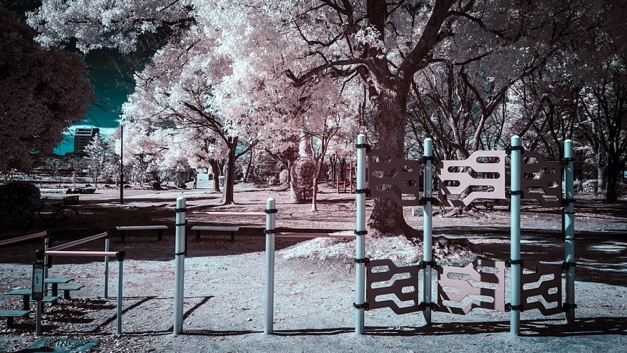 偽総天然色に彩られた公園_d0353489_19271271.jpg