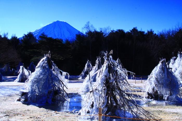 令和2年1月の富士 (6) 西湖樹氷まつりの富士_e0344396_14394080.jpg