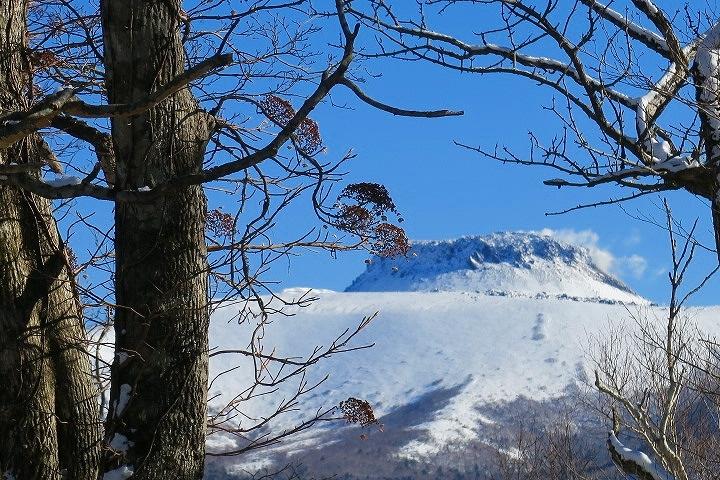 多峰古峰山は途中撤退、2020.1.10_f0138096_12563100.jpg