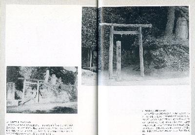 塩竈神社_c0367107_13501664.jpg
