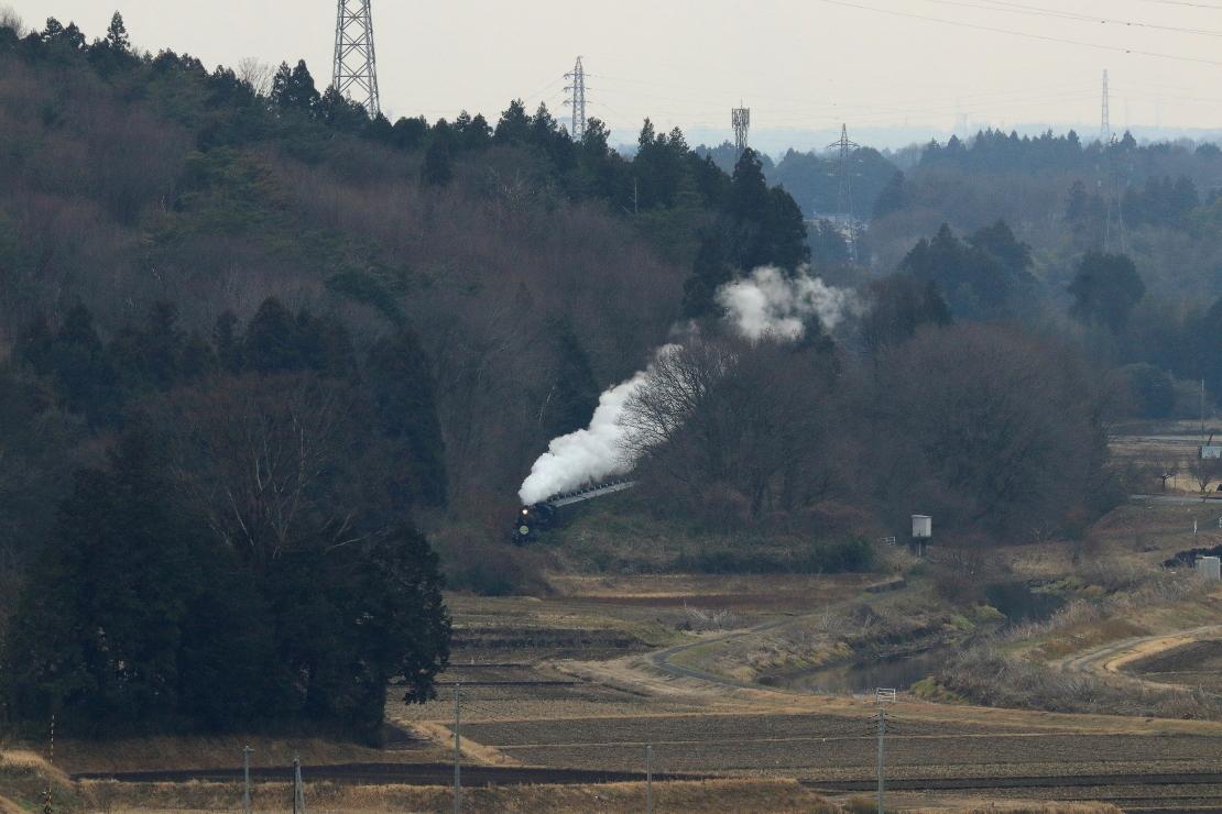 木々の間に白煙立ち上る - 2020年冬・真岡鉄道 -_b0190710_16212220.jpg