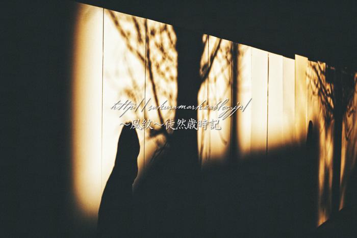 彷徨う冬影。_f0235723_20221412.jpg