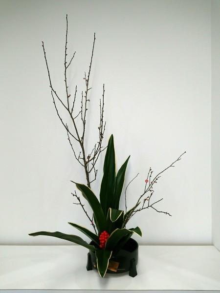 正月花 🎍 _c0165824_17021359.jpg