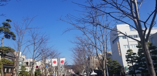 ♪2020年★鎌倉散策_d0162225_20504098.jpg