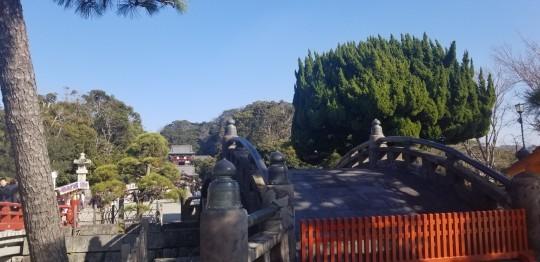 ♪2020年★鎌倉散策_d0162225_20504637.jpg