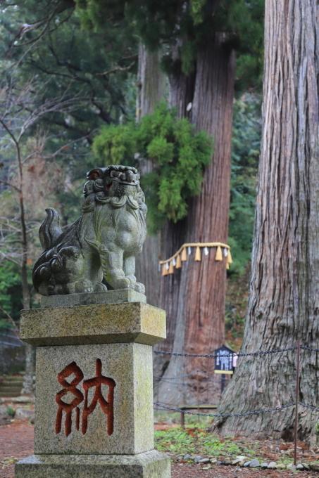 【日枝神社】「独鈷そば大戸」 西伊豆旅行 - 3 -_f0348831_21563949.jpg