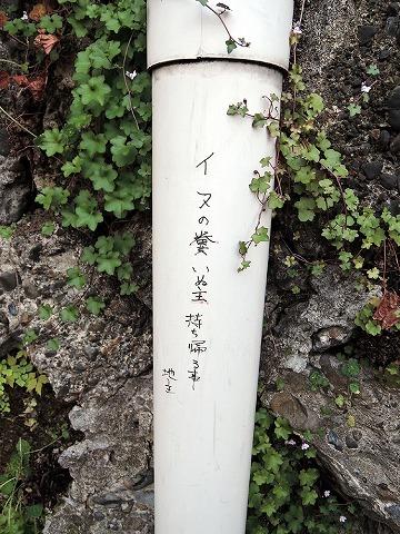 散歩屋日誌【30】_c0062832_14490247.jpg