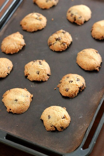 ココナッツとチョコのクッキー_a0165538_10245013.jpg