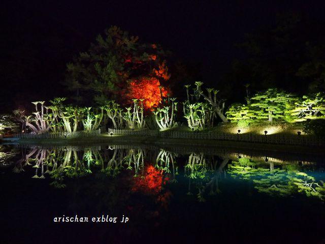 栗林公園のライトアップ紅葉2019と美味しい天麩羅うどん♡_e0406439_21015023.jpg