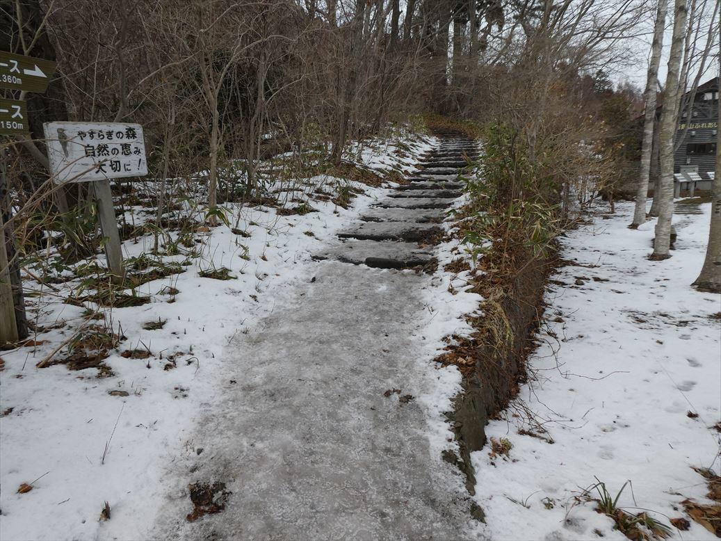 函館山通信 2020年1月13日号_e0145841_17301022.jpg