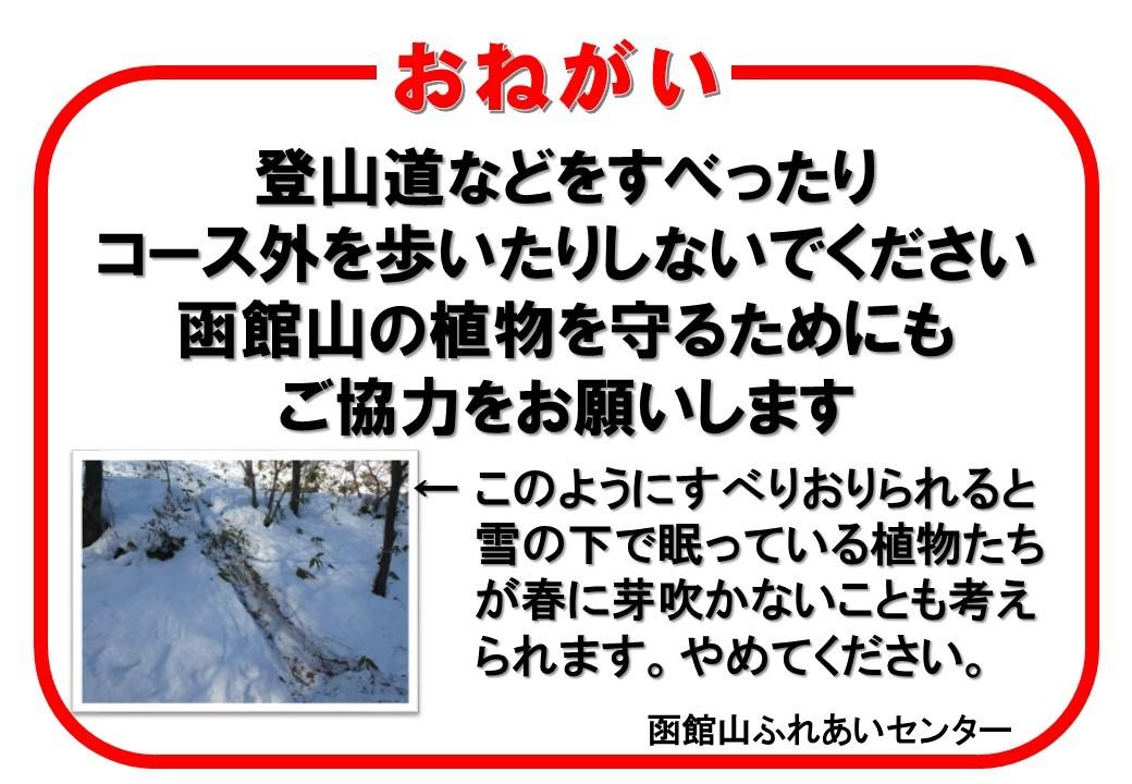 函館山通信 2020年1月13日号_e0145841_17521688.jpg