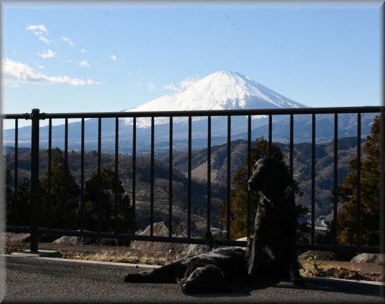 富士山が見える公園_f0363141_04452810.jpg