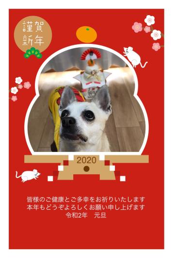 2020/1/14「NEW ヒーロー誕生間近!」_e0242155_23592194.jpg