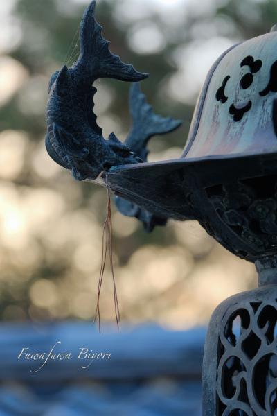 京都 お寺 **_d0344864_21002106.jpg