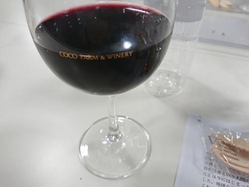 Vineyard Party 地球の上で楽しく生きる@ココファームワイナリー_c0100865_11414818.jpg