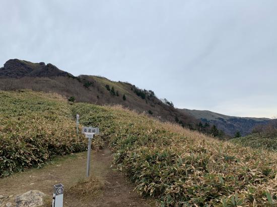 久しぶりの山登り 伊予富士_f0053665_17390423.jpg