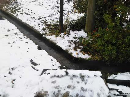 ようやくチョッピリの積雪がありました。でもね、これはすぐ解けるわね。_b0126182_18395047.jpg
