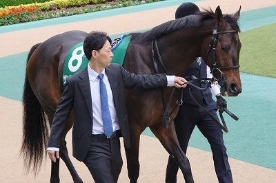 シンザン記念は、牝馬サンクテュエールが接戦を制し、重賞初制覇_b0015386_01471446.jpg