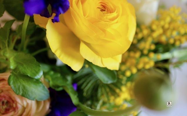 今年も春のお花たちがやって来ました✨_c0128489_22584925.jpg