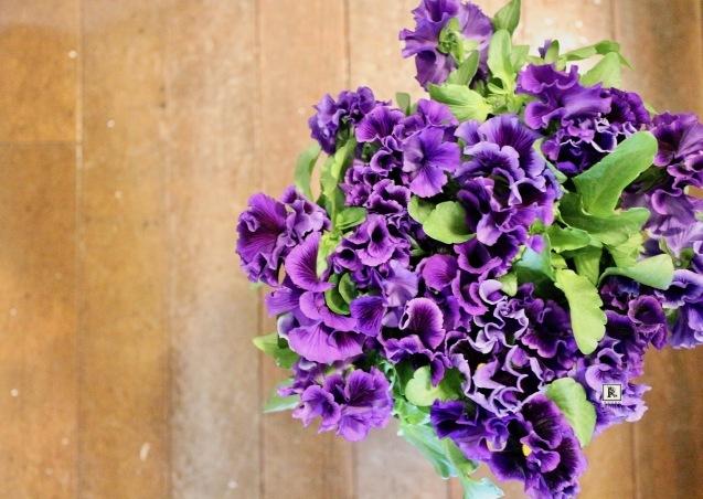 今年も春のお花たちがやって来ました✨_c0128489_22590825.jpg