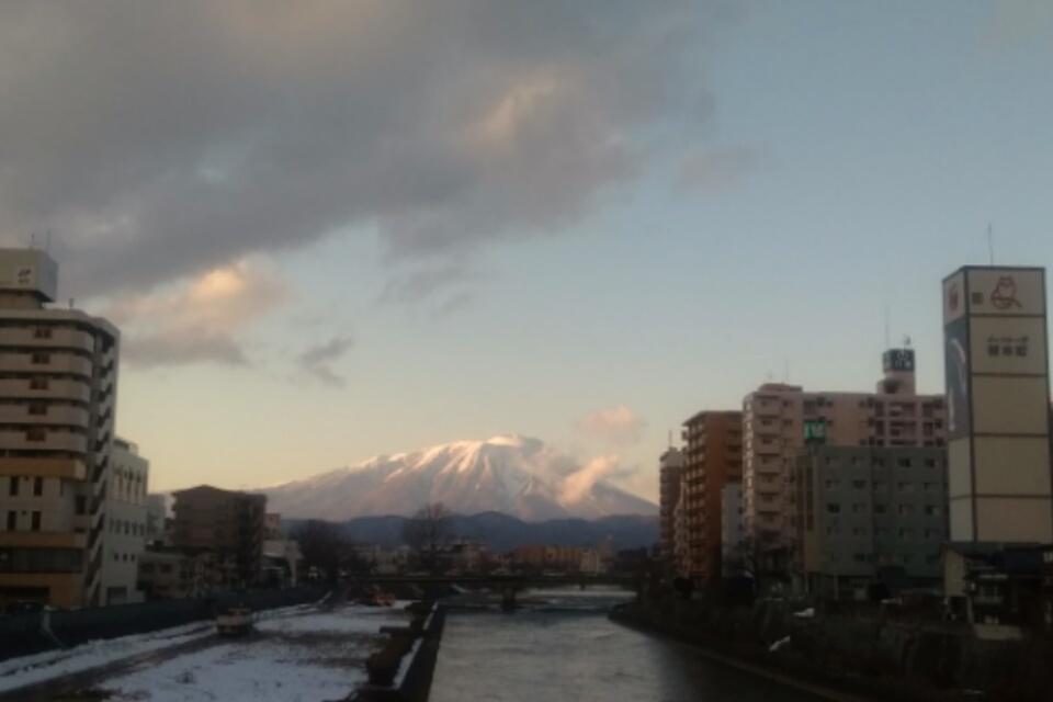松竹_f0326895_20593055.jpg