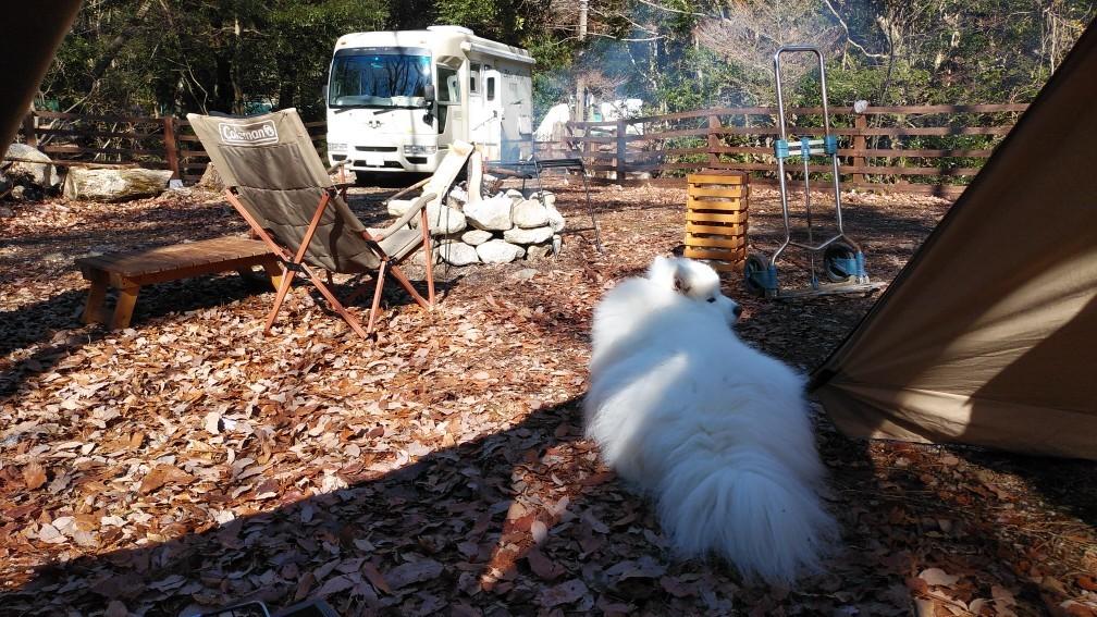 新年キャンプ♪_a0049296_19342290.jpg