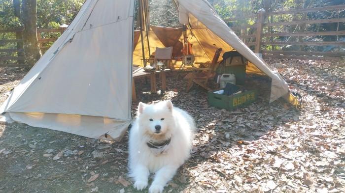 新年キャンプ♪_a0049296_19343762.jpg