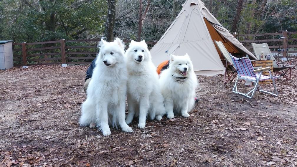 新年キャンプ♪_a0049296_19390433.jpg