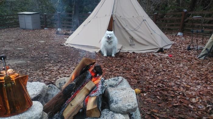 新年キャンプ♪_a0049296_19473470.jpg