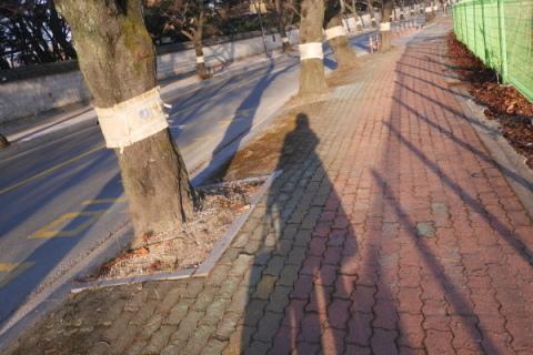 2019年 歳納め大邱 ⑯慶州の朝はヘジャンクッ!_a0140305_02594301.jpg