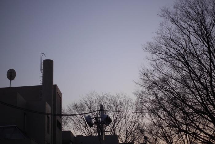 TOKYO SOMEBODY_b0142405_20505434.jpeg