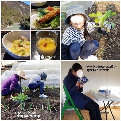 畑、車の免許、三婆会_c0051105_16591125.jpg